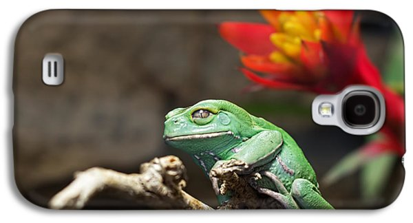 Flying Frog Galaxy S4 Cases - Red and Green Galaxy S4 Case by Barbara McMahon