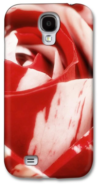 Blend Galaxy S4 Cases - Red and White Rose Galaxy S4 Case by Wim Lanclus