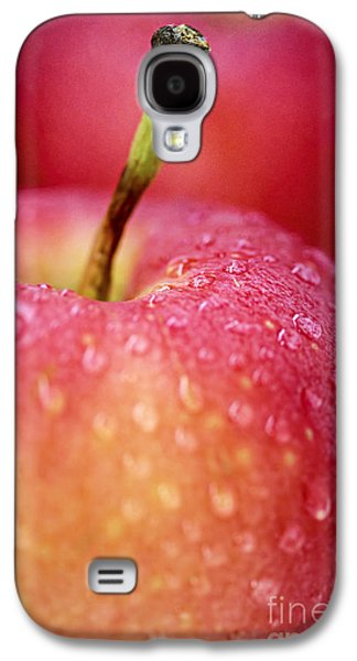 Apple Photographs Galaxy S4 Cases - Red apple macro Galaxy S4 Case by Elena Elisseeva