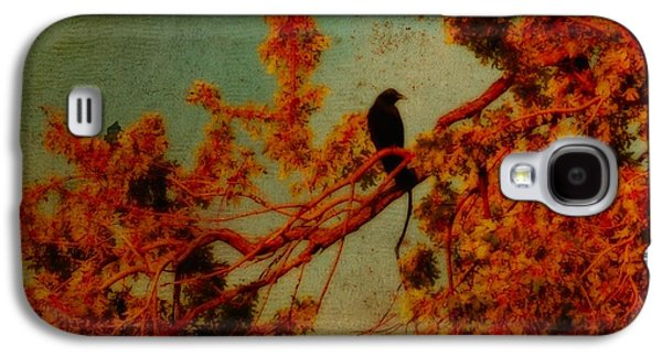 Photographs With Red. Galaxy S4 Cases - Red Autumn Galaxy S4 Case by Gothicolors Donna Snyder