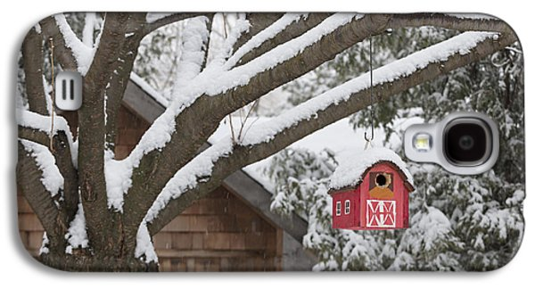 Shed Photographs Galaxy S4 Cases - Red barn birdhouse on tree in winter Galaxy S4 Case by Elena Elisseeva