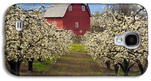 Pears Galaxy S4 Cases - Red Barn Spring Galaxy S4 Case by Mike  Dawson