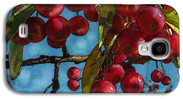 Original Photographs Galaxy S4 Cases - Red Berries Galaxy S4 Case by Colleen Kammerer