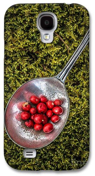 Moss Galaxy S4 Cases - Red Berries Silver Spoon Moss Galaxy S4 Case by Edward Fielding