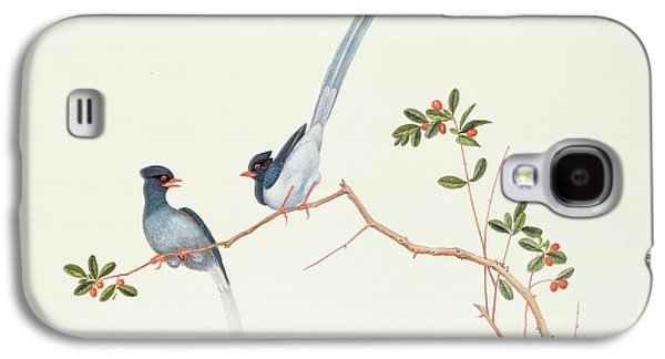 Ornithology Paintings Galaxy S4 Cases - Red Billed Blue Magpies on a Branch with Red Berries Galaxy S4 Case by Chinese School