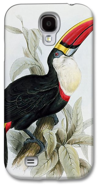Feather Drawings Galaxy S4 Cases - Red-Billed Toucan Galaxy S4 Case by Edward Lear
