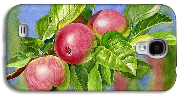 Apple Trees Galaxy S4 Cases - Red Cider Apples with Background Galaxy S4 Case by Sharon Freeman