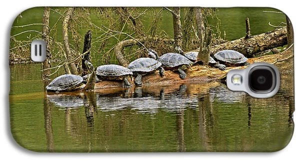 Slider Photographs Galaxy S4 Cases - Red Eared Slider Turtles 2 Galaxy S4 Case by Sharon  Talson