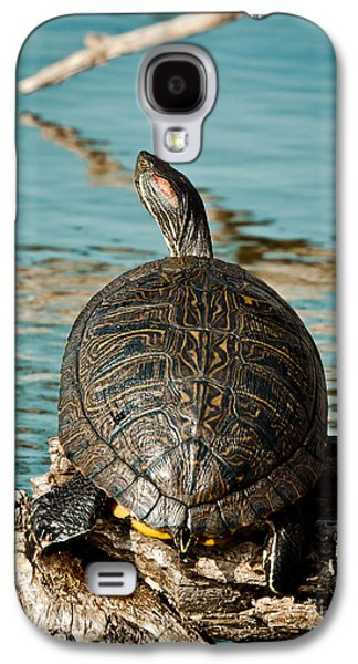 Slider Photographs Galaxy S4 Cases - Red Eared Slider XXL Galaxy S4 Case by Robert Frederick