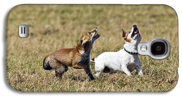 Red Fox Cub And Jack Russell Playing Galaxy S4 Case by Brian Bevan