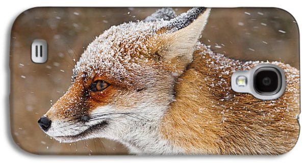 Red Fox Galaxy S4 Cases - Red Fox in a Snow Storm Galaxy S4 Case by Roeselien Raimond
