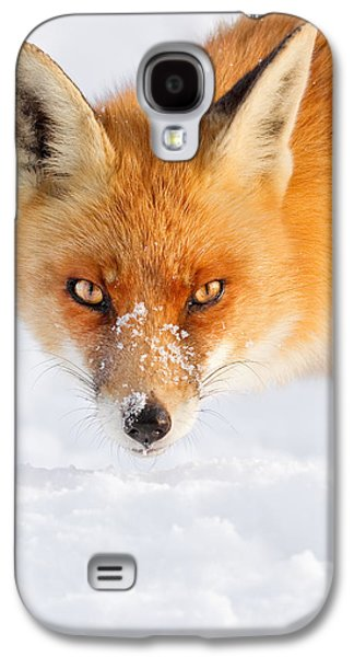 Red Fox Galaxy S4 Cases - Red Fox in the Snow Galaxy S4 Case by Roeselien Raimond