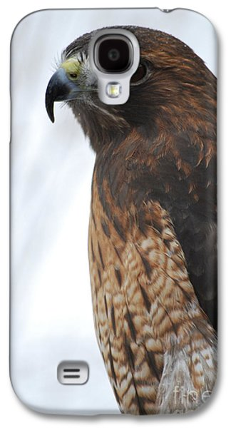 Preditor Galaxy S4 Cases - Red Hawk I Galaxy S4 Case by Sharon Elliott