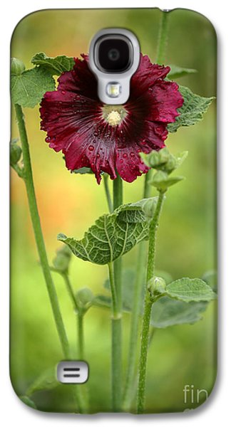 Florida Flowers Galaxy S4 Cases - Red Hollyhock Galaxy S4 Case by Sabrina L Ryan