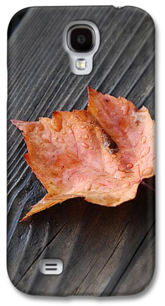 Photographs With Red. Galaxy S4 Cases - Red Leaf On the Dock Galaxy S4 Case by Renee Forth-Fukumoto