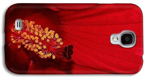 Sun Galaxy S4 Cases - Red Passion Hibiscus Galaxy S4 Case by Bruce Bley