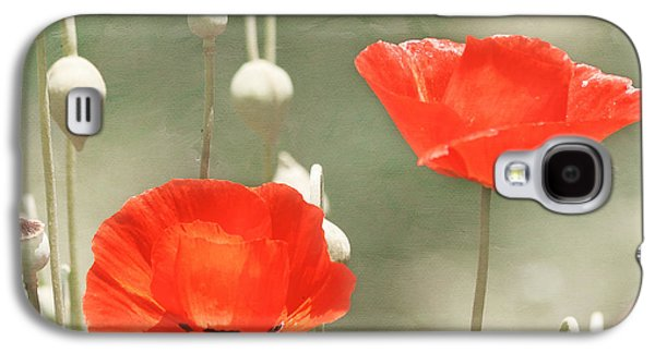 Kim Photographs Galaxy S4 Cases - Red Poppies Galaxy S4 Case by Kim Hojnacki