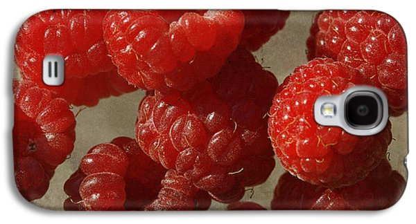 Red Raspberries Galaxy S4 Case by Cindi Ressler
