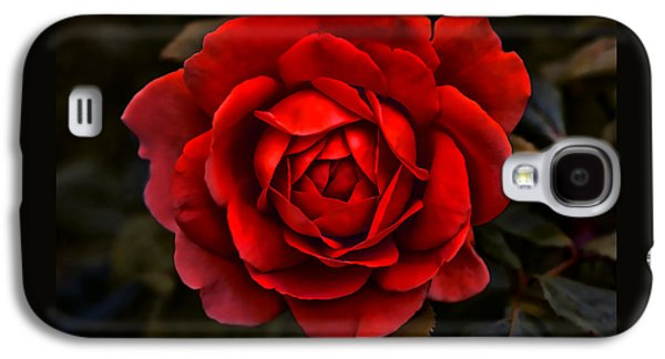 Green Galaxy S4 Cases - Red Red Rose Flower Galaxy S4 Case by Jennie Marie Schell