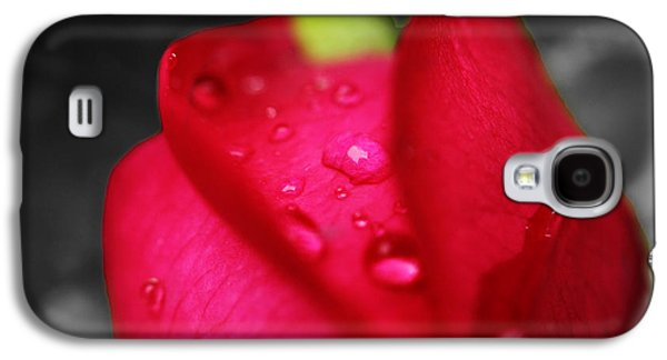 Greeting Cards For Cancer Galaxy S4 Cases - Red Rosa For A Cure Galaxy S4 Case by James Lopez