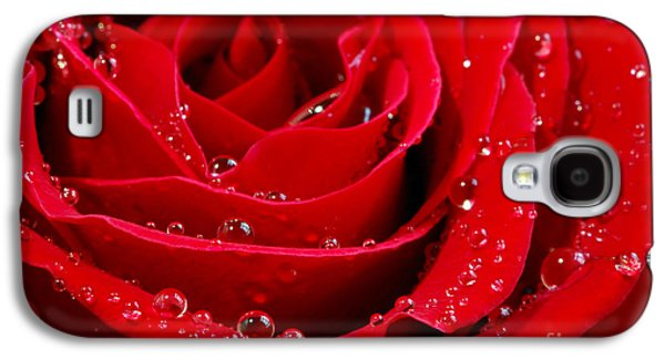 Recently Sold -  - Botanical Galaxy S4 Cases - Red rose Galaxy S4 Case by Elena Elisseeva