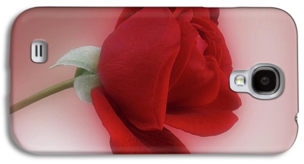 Indiana Flowers Galaxy S4 Cases - Red Rose for You Galaxy S4 Case by Sandy Keeton
