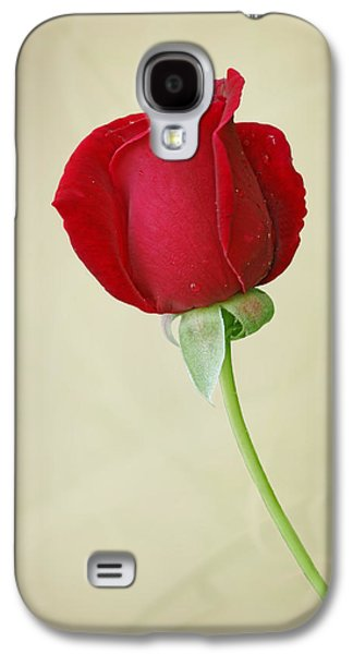 Indiana Flowers Galaxy S4 Cases - Red Rose on White Galaxy S4 Case by Sandy Keeton