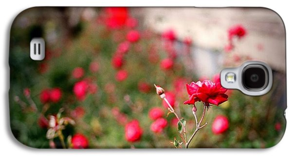 Red Roses On Film Galaxy S4 Case by Linda Unger