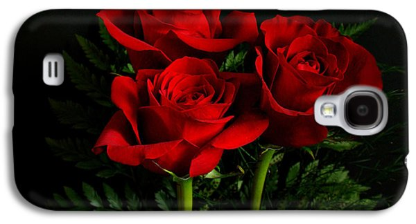 Indiana Flowers Galaxy S4 Cases - Red Roses Galaxy S4 Case by Sandy Keeton