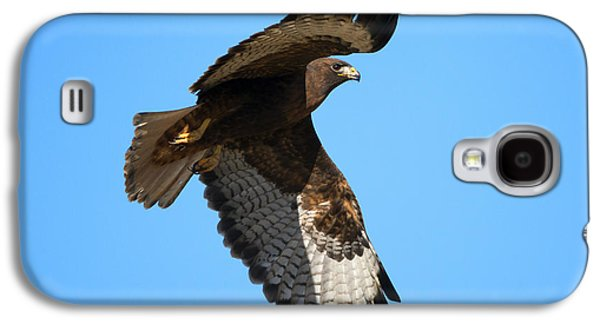 Red Tail Hawk Galaxy S4 Cases - Red-Tail Flight Galaxy S4 Case by Mike Dawson