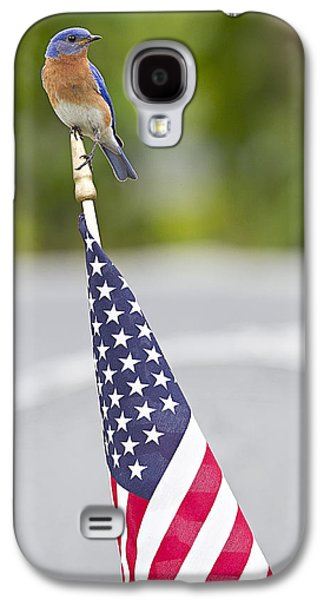 4th July Galaxy S4 Cases - Red White and Bluebird Galaxy S4 Case by John Vose