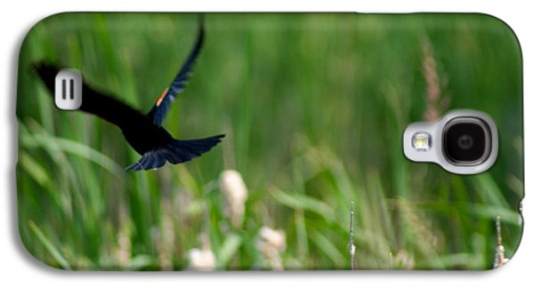 Creative Blackbird Galaxy S4 Cases - Red Winged Blackbird Galaxy S4 Case by Andrew Lahay