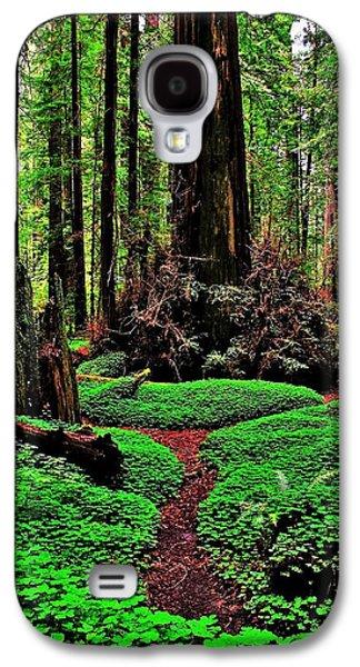 Alice In Wonderland Galaxy S4 Cases - Redwoods Wonderland Galaxy S4 Case by Benjamin Yeager