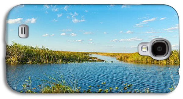 Reed At Riverside, Big Cypress Swamp Galaxy S4 Case by Panoramic Images
