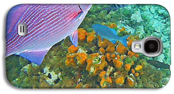 Fish On A Reef Galaxy S4 Cases - Reef Life Galaxy S4 Case by John Malone