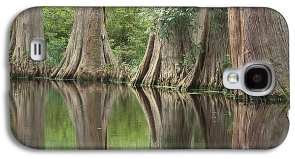 Trees Reflecting In Water Galaxy S4 Cases - Reflections Of Cypress Trees Galaxy S4 Case by Art Wolfe
