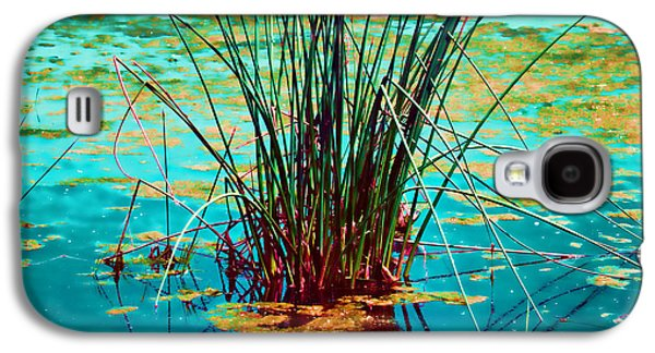 Alga Galaxy S4 Cases - Reflective Water Plants Galaxy S4 Case by Bonnie Bruno