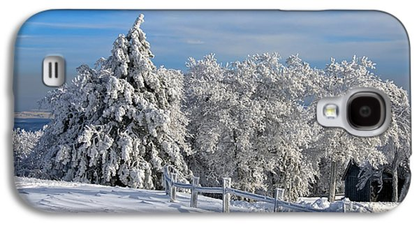 Trees In Snow Galaxy S4 Cases - Refresh Galaxy S4 Case by Lois Bryan