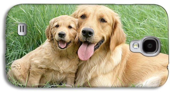 Best Sellers -  - Puppy Digital Art Galaxy S4 Cases - Relaxing Retrievers Galaxy S4 Case by Greg Cuddiford