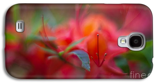 Rhododendron Galaxy S4 Cases - Rhododendron Color Dream Galaxy S4 Case by Mike Reid