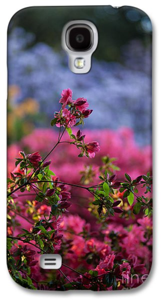 Rhododendron Galaxy S4 Cases - Rhododendron Pink Dream Galaxy S4 Case by Mike Reid
