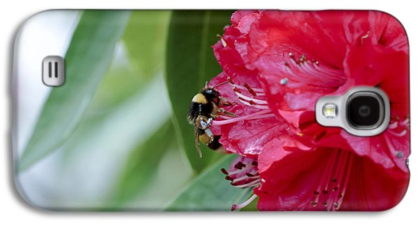 Rhododendron Galaxy S4 Cases - Rhododendron With Bumblebee Galaxy S4 Case by Frank Tschakert