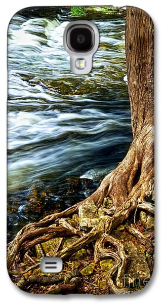 Tree Roots Galaxy S4 Cases - River through woods Galaxy S4 Case by Elena Elisseeva
