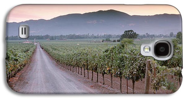 Winery Photography Galaxy S4 Cases - Road In A Vineyard, Napa Valley Galaxy S4 Case by Panoramic Images