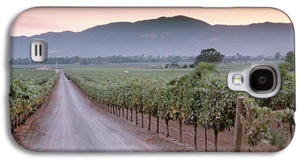 Vineyard In Napa Galaxy S4 Cases - Road In A Vineyard, Napa Valley Galaxy S4 Case by Panoramic Images