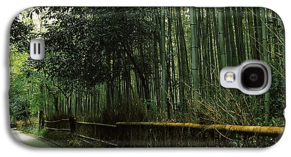 Bamboo Fence Galaxy S4 Cases - Road Passing Through A Bamboo Forest Galaxy S4 Case by Panoramic Images