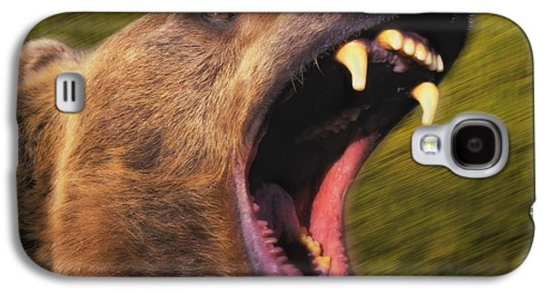Growling Galaxy S4 Cases - Roaring Grizzly Bears Face Rocky Galaxy S4 Case by Thomas Kitchin & Victoria Hurst