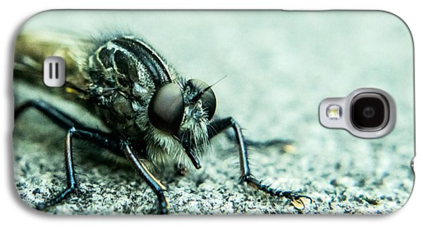 Preditor Galaxy S4 Cases - Robber Fly Eyeball to Eyeball Galaxy S4 Case by Douglas Barnett