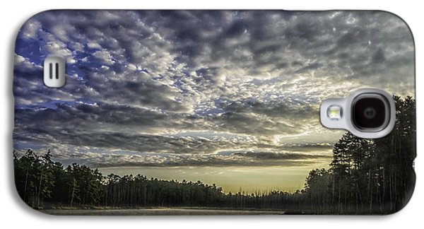 Pine Barrens Galaxy S4 Cases - Roberts Branch Pine-lands Landscape Galaxy S4 Case by Louis Dallara