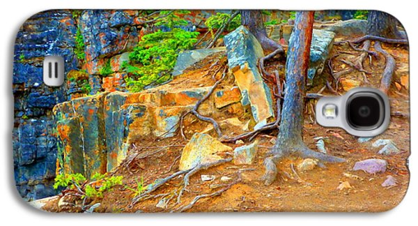 Tree Roots Mixed Media Galaxy S4 Cases - Rocks and Root Galaxy S4 Case by John Kreiter